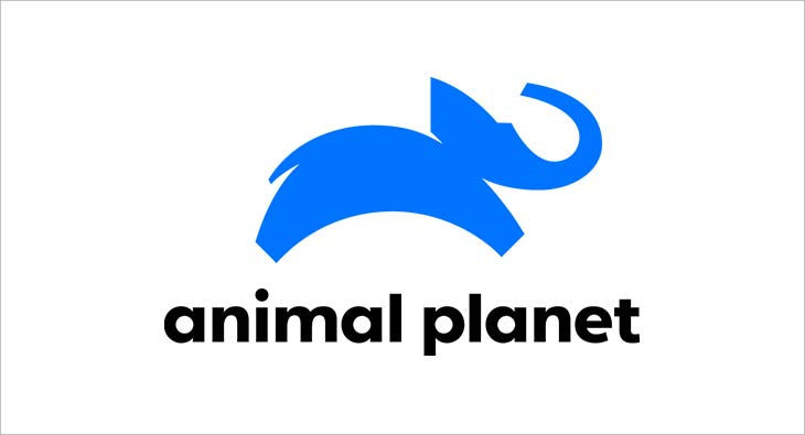 Animal Planet celebrates 20th anniversary with brand refresh ...